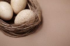 lyckliga easter Bakgrund med naturliga ägg i redet Royaltyfri Foto