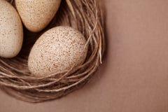 lyckliga easter Bakgrund med naturliga ägg i redet Fotografering för Bildbyråer