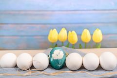 Lyckliga easter, det organiska blåa easter ägget i mitt av vita färgägg väntar på målning, easter feriegarneringar Royaltyfri Fotografi