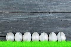 lyckliga easter färgrika easter ägg gräs green Royaltyfria Foton