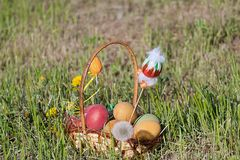 lyckliga easter färgrika easter för korg ägg Arkivbilder