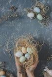 lyckliga easter Händer som rymmer easter ägg i rede med easter garnering, bästa sikt Royaltyfri Fotografi