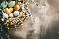 lyckliga easter Lyckönsknings- easter bakgrund easter äggblommor Arkivfoto