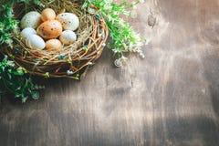 lyckliga easter Lyckönsknings- easter bakgrund easter äggblommor Royaltyfria Bilder