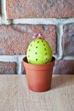 lyckliga easter Naturlig färg DIY och handgjort Målat ägg gjord easter äggbild grön livstid blommaillustrationen shoppar smellcom royaltyfri foto