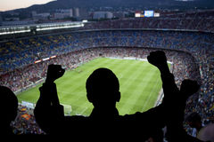 Lyckliga fotbollfans royaltyfria bilder