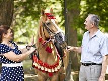 Lyckliga gamla par med hästen. Arkivbilder