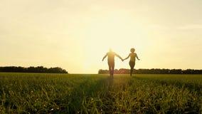 Lyckliga händer för barnparinnehav som kör till och med ett brett fält på en solnedgångbakgrund by En man och en kvinnakörning lager videofilmer