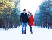 Lyckliga härliga par som tillsammans går i vinter fotografering för bildbyråer