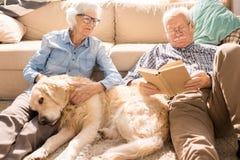 Lyckliga höga par i solbelyst hem royaltyfria bilder