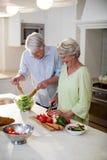 Lyckliga höga par som förbereder grönsaksallad Fotografering för Bildbyråer