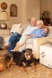 Lyckliga höga par som kopplar av med deras hemmastadda hund royaltyfri foto
