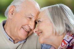Lyckliga höga par som ser de royaltyfria foton
