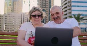 Lyckliga höga par som sitter på en bänk i sommaren i en modern stad med en bärbar dator bland palmträden på stock video