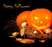 lyckliga halloween Arkivfoto