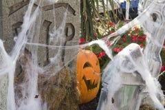 Lyckliga Halloween! Arkivbilder