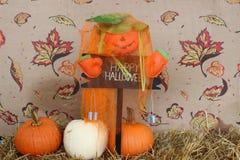 Lyckliga Halloween pumpor Royaltyfria Foton
