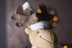 Lyckliga hjortar för jul i mörk inre Royaltyfri Fotografi