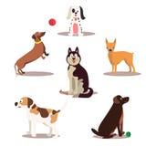 Lyckliga hundtecken på vit bakgrund Hundkapplöpning som står och sitter stock illustrationer