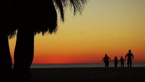 Lyckliga körningar för en familj längs stranden Mörka konturer, i bakgrunden av solnedgångfåglar flyger stock video