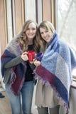 Lyckliga kvinnavänner hemma i vinter arkivfoto