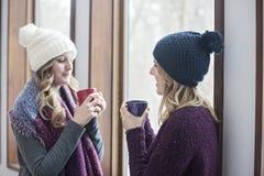 Lyckliga kvinnavänner hemma i vinter fotografering för bildbyråer