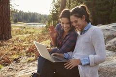 Lyckliga lesbiska par genom att använda datoren i bygden royaltyfri fotografi