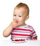 lyckliga lilla jordgubbar för pojke Royaltyfri Fotografi