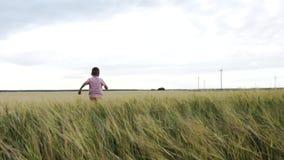 Lyckliga Little Boy för ultrarapid körningar bort över ett vetefält stock video