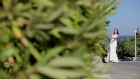 Lyckliga nygifta personer går på kusten i en parkera nära de gröna buskarna Grekland arkivfilmer