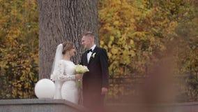 Lyckliga nygifta personer som g?r i, parkerar Elegant brud och handomebrudgum utanf?r stock video