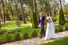 Lyckliga nygifta personer som rymmer händer och går på gångbanan i sommar p arkivfoto