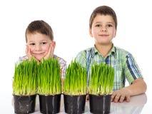 Lyckliga och allvarliga pojkar med nytt grönt gräs arkivbild