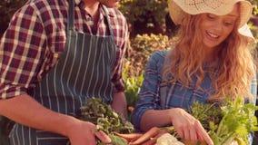 Lyckliga par med asken av grönsaker arkivfilmer