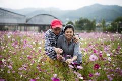 Lyckliga par på blommaträdgården påverkar varandra affectionately Royaltyfria Bilder
