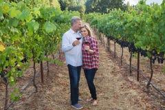 Lyckliga par på en vinvingård fotografering för bildbyråer