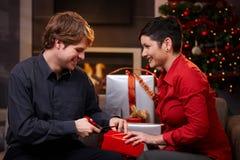 Lyckliga par som förbereder sig för jul Fotografering för Bildbyråer