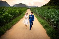 Lyckliga par som har gyckel i fältet på solnedgången fotografering för bildbyråer
