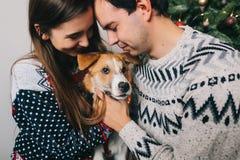 Lyckliga par som kramar hunden och omfamnar på julträdet med li Arkivbilder