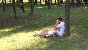 Lyckliga par som tillsammans sitter på gräs parkerar in, att krama och lutar på träd lager videofilmer