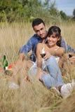 Lyckliga par som tycker om bygdpicknicken Fotografering för Bildbyråer