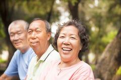 Lyckliga pensionärer i parkera Royaltyfri Bild