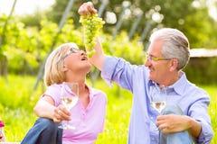 Lyckliga pensionärer som har picknicken som dricker vin Royaltyfri Foto