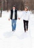 Lyckliga pensionärpar som går i vinterpark Arkivbilder