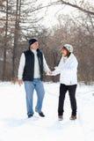 Lyckliga pensionärpar som går i vinterpark Arkivbild