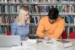 Lyckliga studenter som arbetar med bärbara datorn i arkiv Arkivfoton