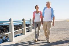 Lyckliga tillfälliga par som går vid kusten Arkivbild