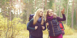 Lyckliga två och härliga flickor som går i skog och träsk läger Royaltyfri Fotografi