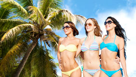 Lyckliga unga kvinnor i bikinier på sommar sätter på land Arkivbild