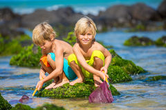 Lyckliga unga ungar som spelar på stranden på sommarsemester Royaltyfri Foto